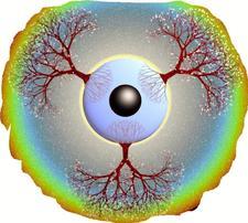 HEAL EARTH logo