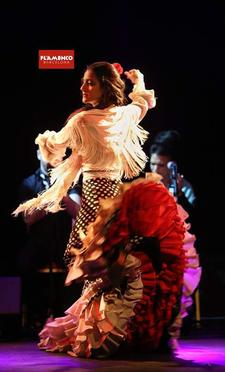Flamenco Barcelona logo