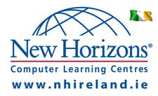 New Horizons Ireland logo