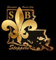 SB Steppers  logo