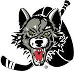Chicago Wolves Hockey Game 2014