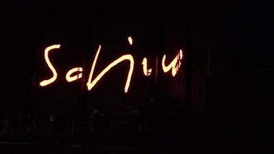 Sualdi logo