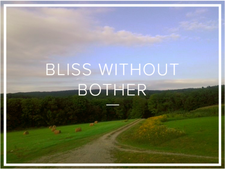 Bliss Without Bother logo