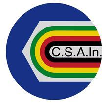 CSAIn comitato provinciale Napoli logo