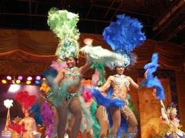 Social and fabulous Dinner-Show-Dance in a tropical &...