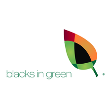 BLACKS IN GREEN™ logo