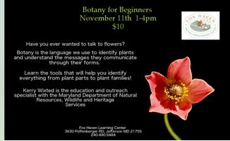 Botany for Beginners:  November 11th