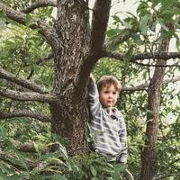 Managing Challenging Behaviors: The Environment as a...