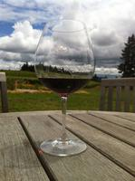 The Oregon Pinot Show
