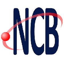 Instituto Newton C. Braga logo