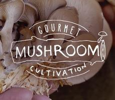 Gourmet Mushroom Cultivation