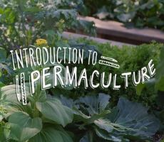 Intro to Permaculture