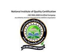 NIQC Six Sigma logo