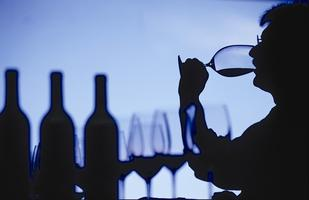 Develop your Wine IQ - Version A
