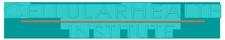 Cellular Health Institute logo