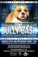 Huntsville's New Year Bully Bash
