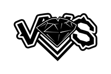 Vivid Visions Of Success, LLC logo
