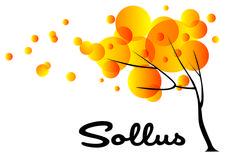 Sollus Consultancy logo