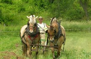 The New Horse-Powered Farm: Tools and Systems for the...