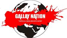 GALLAY NATION INC//TPK//STARBWOYHD logo