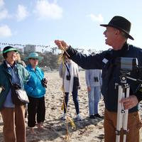 Snowy Plover Beach Ecology Walk with the Santa Monica...