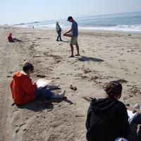 Beach Walk & Sketch with the LA Audubon Society