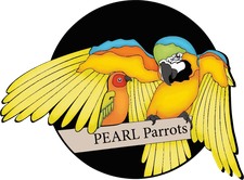 PEARL Parrot Rescue logo