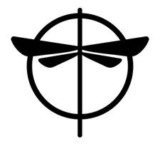 Aerial Dragonfly Movement Studio  logo