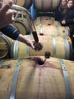 Barrel Tasting & Cellar Tour