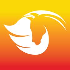 Holistic Dreamz logo