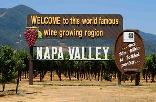 A Guided Tour of Napa