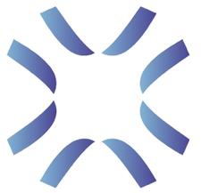 SAVINO & PARTNERS S.R.L. logo
