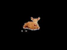 Big Barn Farm Goats logo