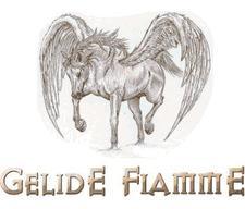 Compagnia Gelide Fiamme logo