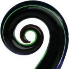 The New Zealand Business Women's Network logo