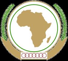 AU Diaspora Youth Initiative logo