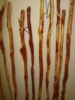 Walking Stick Workshop-$25 +materials