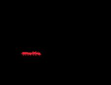 Camino con Corazón logo