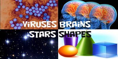 New Science Smorgasbord: Viruses, Stars, Brains, &...