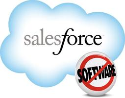 Inaugural of the New Delhi Salesforce Platform Develope...