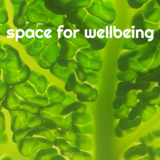 Space for Wellbeing Portslade Brighton logo