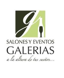 Salones Galerías Lerma logo