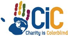 NetSAP DC Charity is Colorblind Pub Crawl