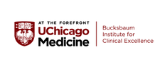 Bucksbaum Institute for Clinical Excellence logo