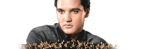 Elvis In Concert - Live On Screen (With a special...