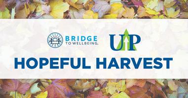 Hopeful Harvest Distribution Day- Volunteer Sign-Up