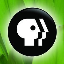 PBS Hawaiʻi logo