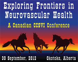 Exploring Frontiers in Neurovascular Health  -  A...
