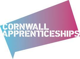 Dan Rogerson hosting the Cornwall Apprenticeships 300...