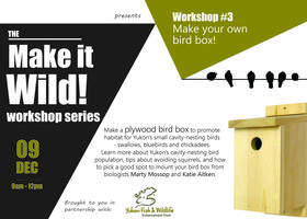 Make it Wild! Make your own Bird Box